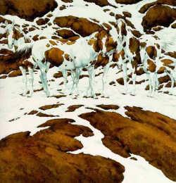 les chevaux dans Illusions d'optique illusion_chevaux2